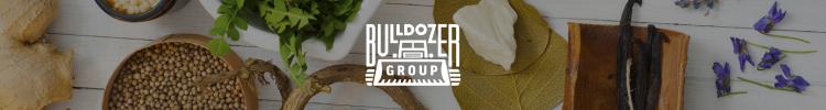Bulldozer group, Ресторанный холдинг